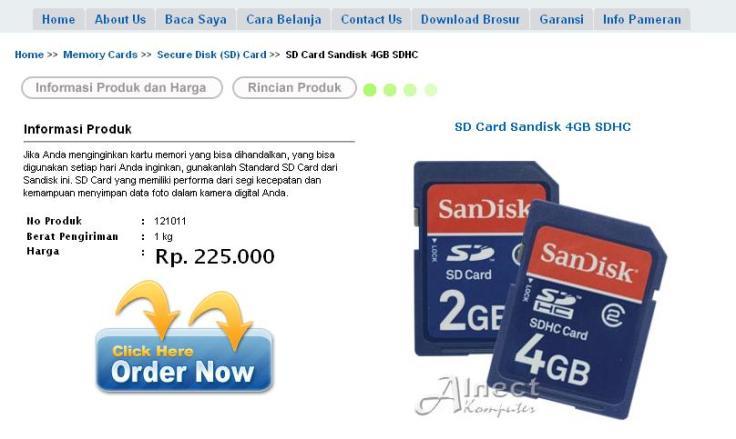 SanDisk 4GB Alnect