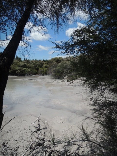 Rotorua Mood Pool