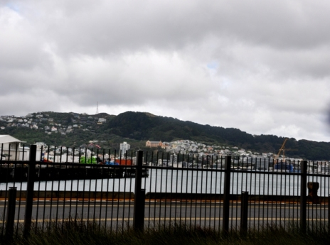Wellington 4