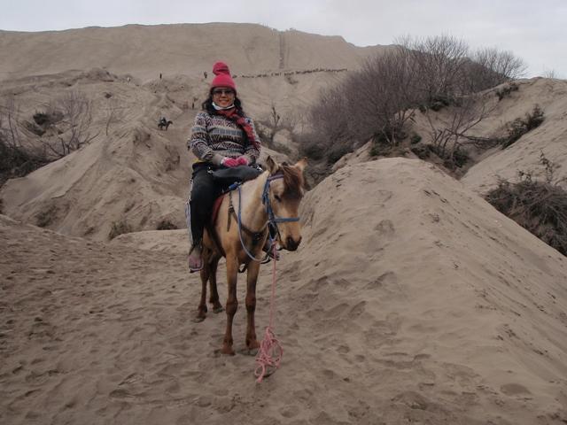 Dengan membayar seratus ribu rupiah akhirnya saya pun menunggang kuda menuju ke Puncak Bromo.