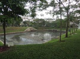 Polder yang mengatur aliran air