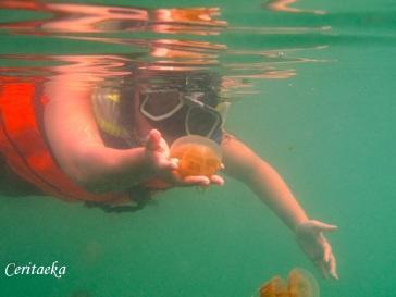 4 Kakaban Lake