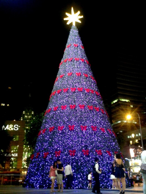 Look how tiny the people are compare to the Christmas tree!