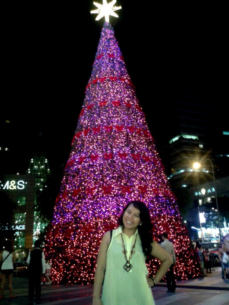 Christmas in Singapore 2