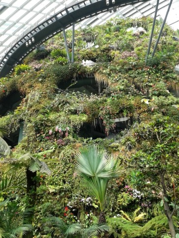 Gardens by the Bay 10