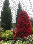 Gardens by the Bay 16