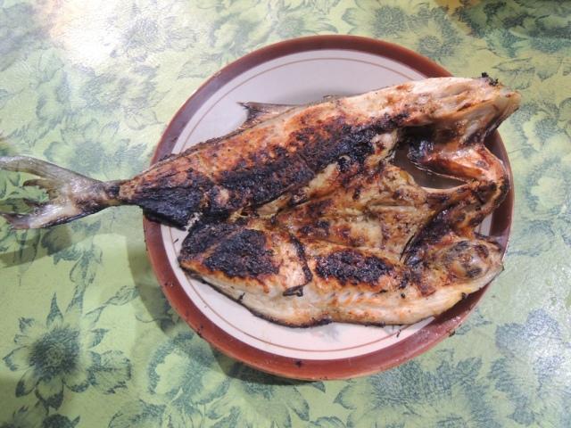 Ikan Patikoli