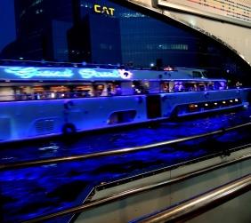 Chao Phraya River Bangkok 15