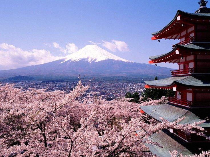 Sakura dan Gunung Fuji. Perpaduan indah yang meneduhkan hati.