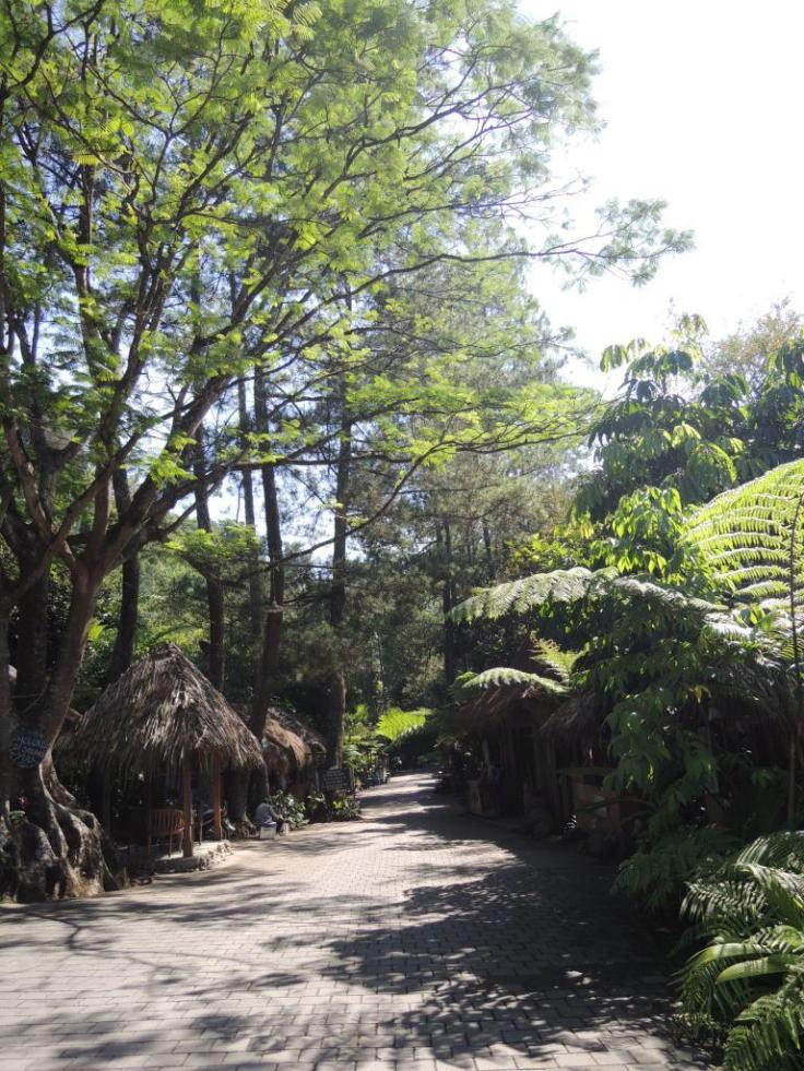 This is the restaurant area. We eat in the small huts  on the left and right of the path. Don't you just love the restaurant concept?