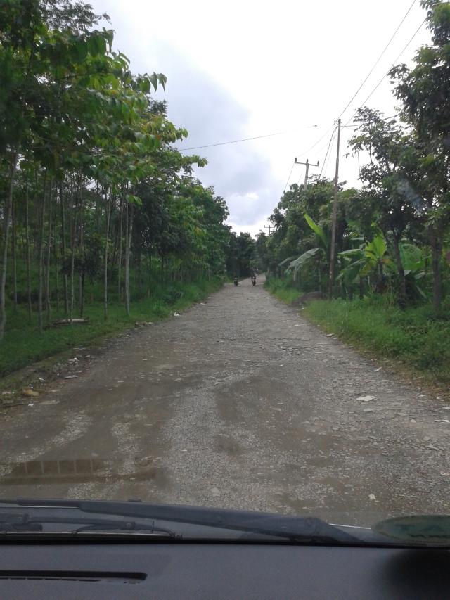 Penampakan jalan menuju Air Terjun Bidadari. Ini masih yang agak bagus sih. Hehehe