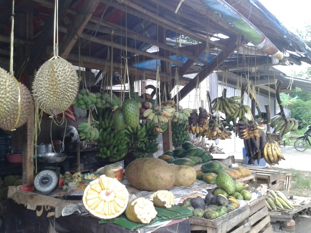 Di sepanjang jalan kita bisa jajan durian atau nangka dan buah khas tangan Bogor lhoo. Komplit deh pikniknya.