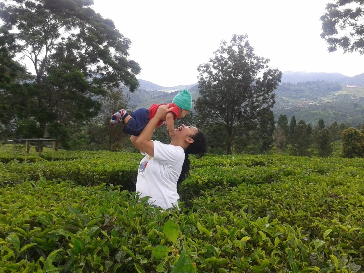 Spending my last day of leaves taking Bastian do a little tracking at the tea plantation. It was so much fun. Bastian giggled the whole time. Yes, my son... Life is an adventure. Embrace it!