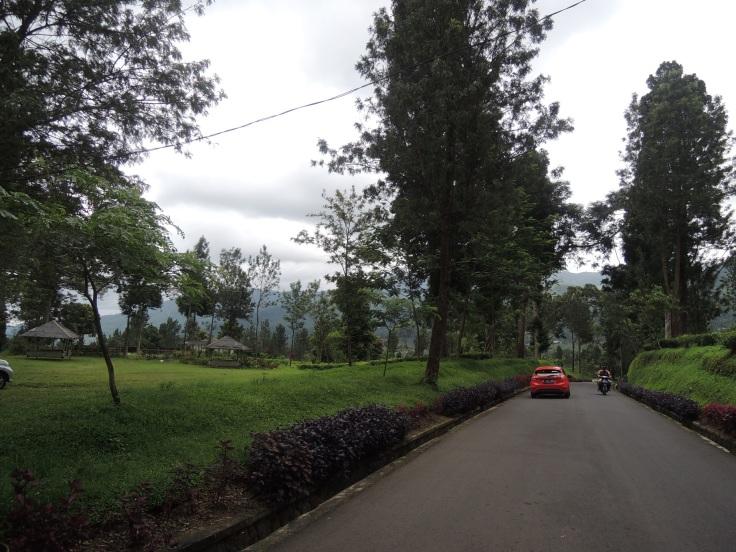 Memasuki areal Agrowisata Gunung Mas. Jalannya mulus
