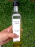Bergabung di Revolusi Olive Oils yuks