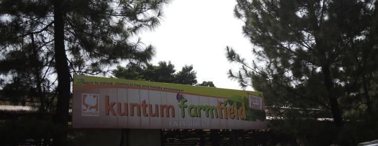 Pintu masuk Kuntum FarmField