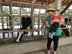 Kuntum Farmfield Bogor 7