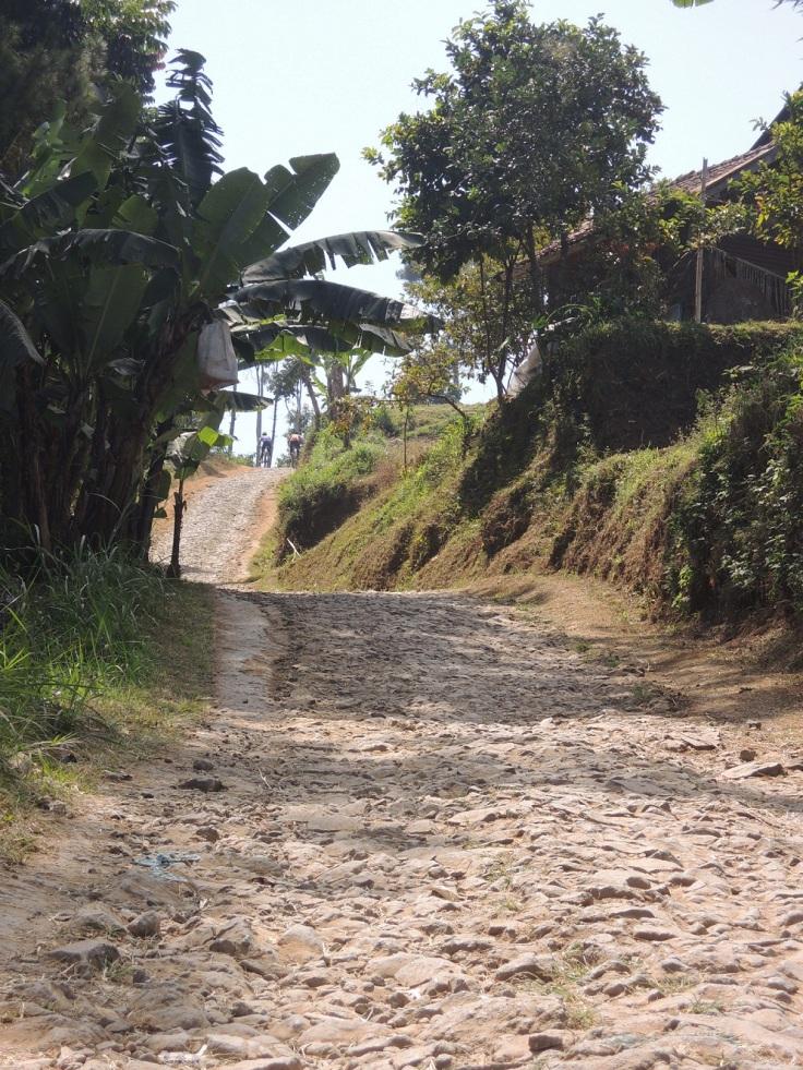 Jalan menuju ke Tebing Keraton. Kalo ada mobil papasan wah susah deh. Ngeri cyin! Sebelahnya jurang.