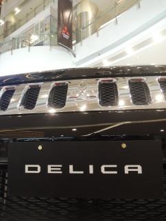 Mitsubishi Delica Royal 3