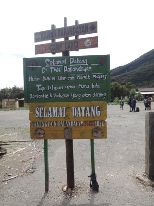 Gunung Papandayan 3