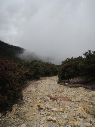 Gunung Papandayan 9