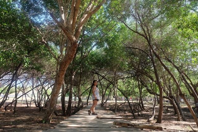 Pepohonan teduh nan rimbun yang menyambut di Pulau Komodo