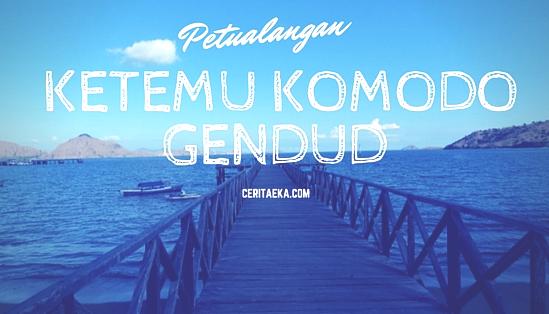 Pulau Komodo Island