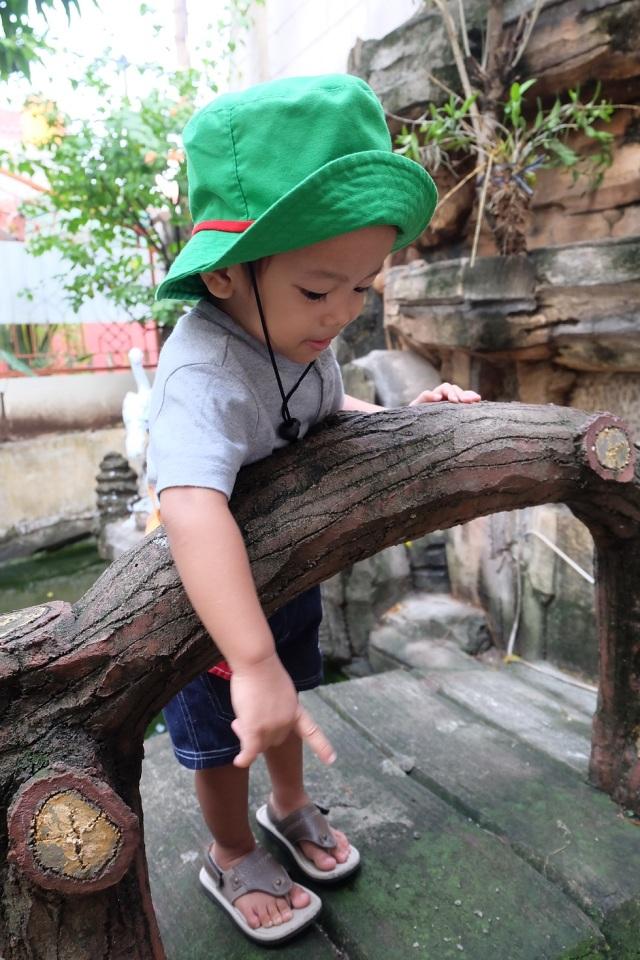 B lagi kasih makan ikan di kolam rumahnya Oppung. Ah, tumbuhlah jadi anak yang peduli pada sesama, lingkungan juga hewan ya, anakku sayang :* Seperti Taro Rangers itu.