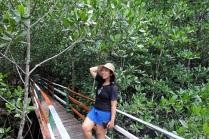 hutan-mangrove-pintu-kota-bitung-1