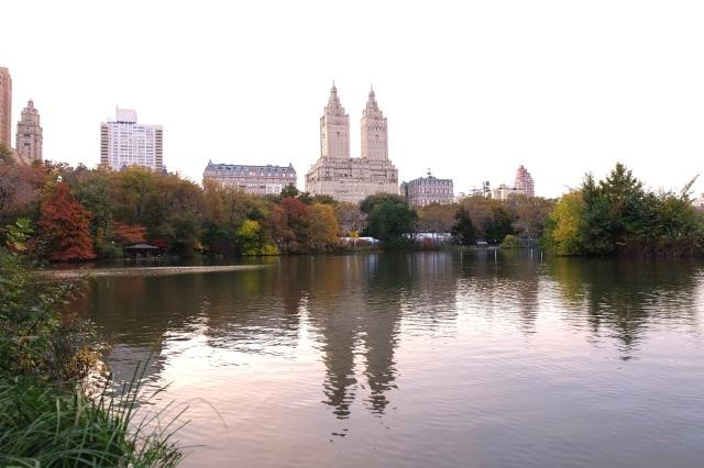 The Lake at Central Park. Banyak apartemen selebritis menghadap ke danau di taman ini. Begitu kata pengemudi becak saya.