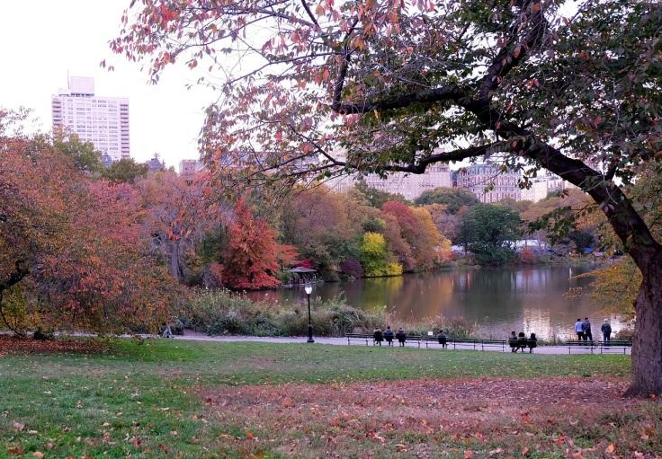 The famous Central Park dengan rerimbunan pohon yang cantik di musim gugur