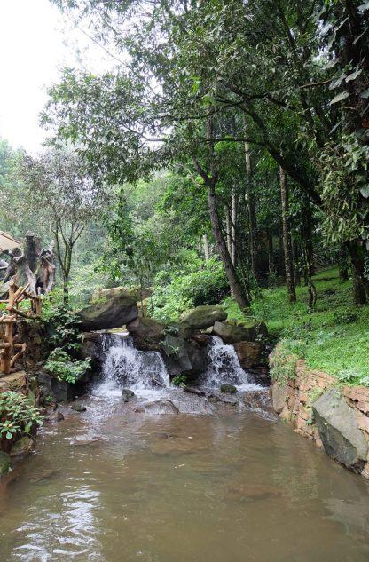 Taman Safari Lodge 5