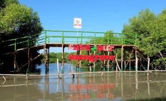 Ekowisata Mangrove Karangsong 2