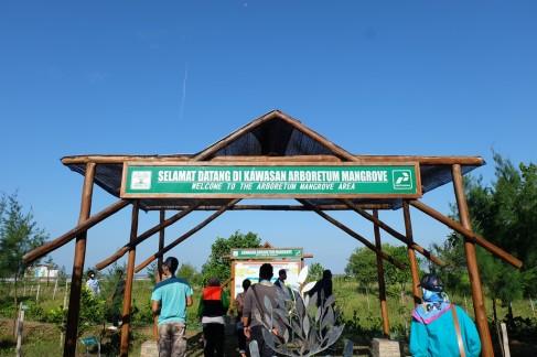 Ekowisata Mangrove Karangsong 3