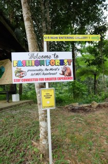 Fashion Forrest Resorts World Genting 3