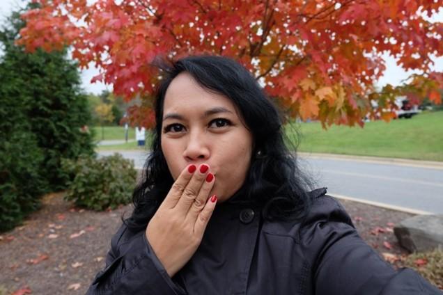Autumn Musim Gugur