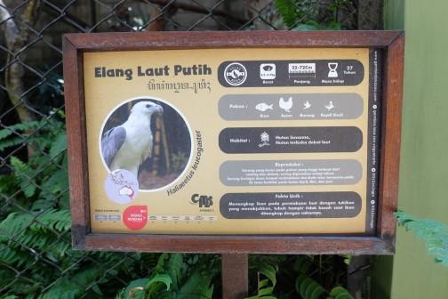 Penjelasan mengenai hewan di Gembira Loka