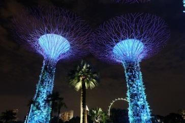 Gardens by the Bay, cantik dengan lampu-lampunya